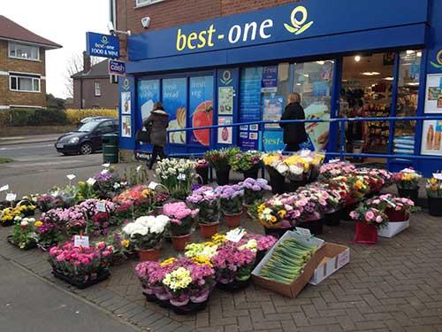 Stock-local-flowers