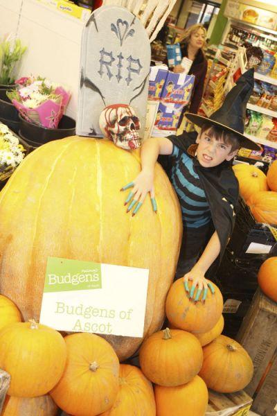 budgens, ascot, pumpkin, in-store theatre, merre brow, giant